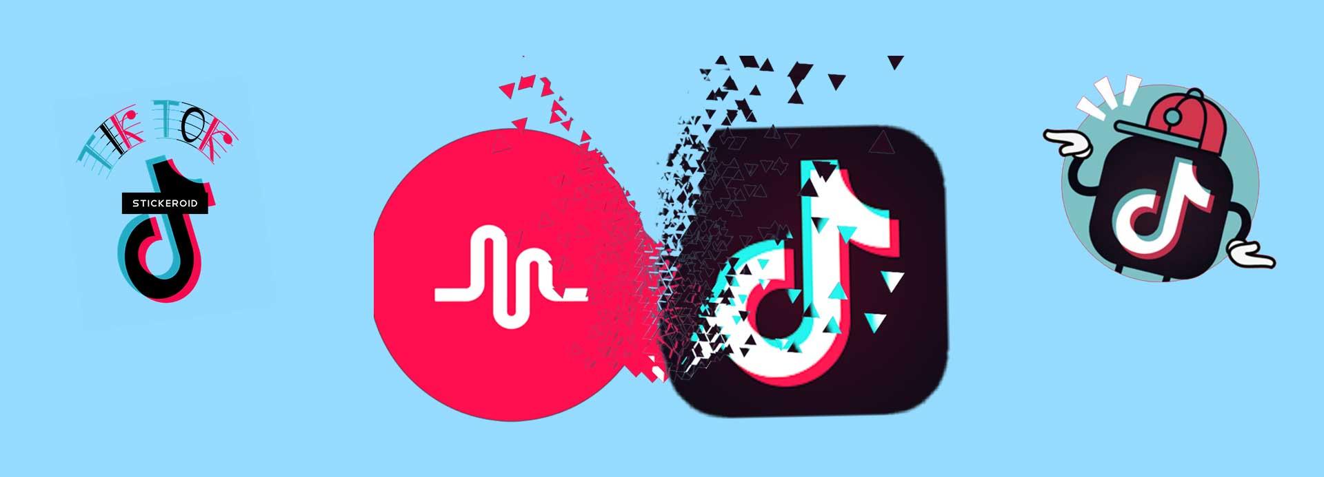 TikTok Video Marketing, The Next Big Thing